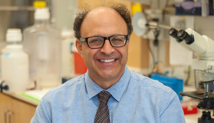 Image with caption: Howard Fox, M.D., Ph.D., senior associate dean of research and development, UNMC College of Medicine