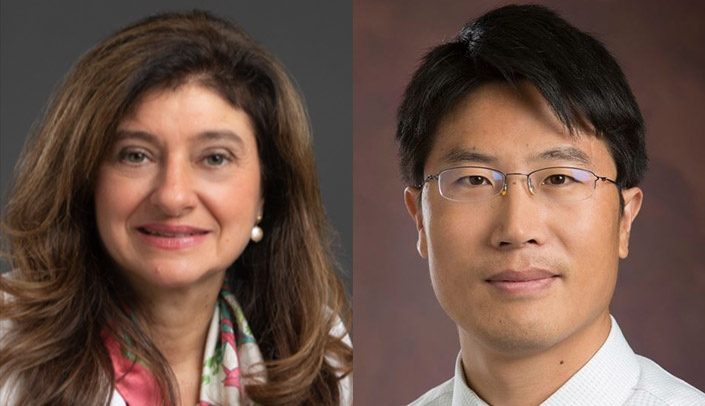 Image with caption: From left, Anna Spagnoli, M.D., and Tieshi Li, Ph.D.