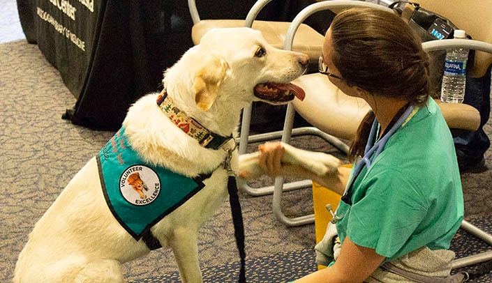 Image with caption: Events include a visit from volunteers from Paws for Friendship, a local pet therapy organization.